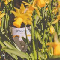 Hooglander-Saison-300x300