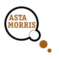 logo_astamorris